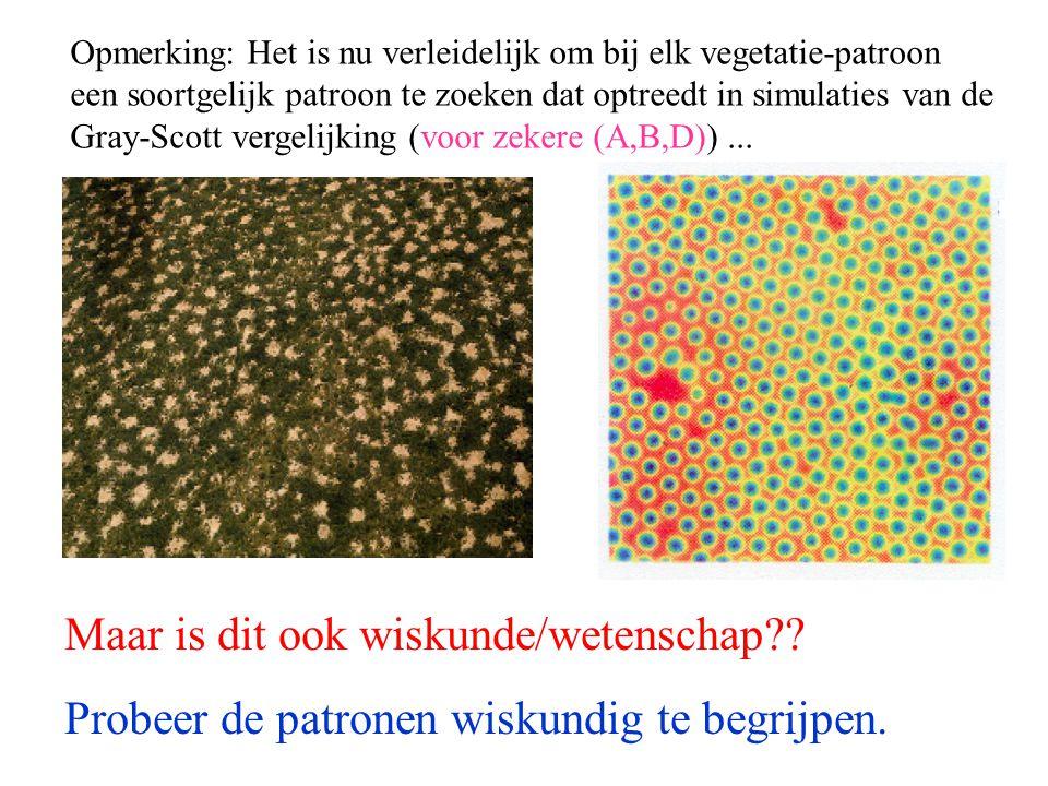 Opmerking: Het is nu verleidelijk om bij elk vegetatie-patroon een soortgelijk patroon te zoeken dat optreedt in simulaties van de Gray-Scott vergelijking (voor zekere (A,B,D))...