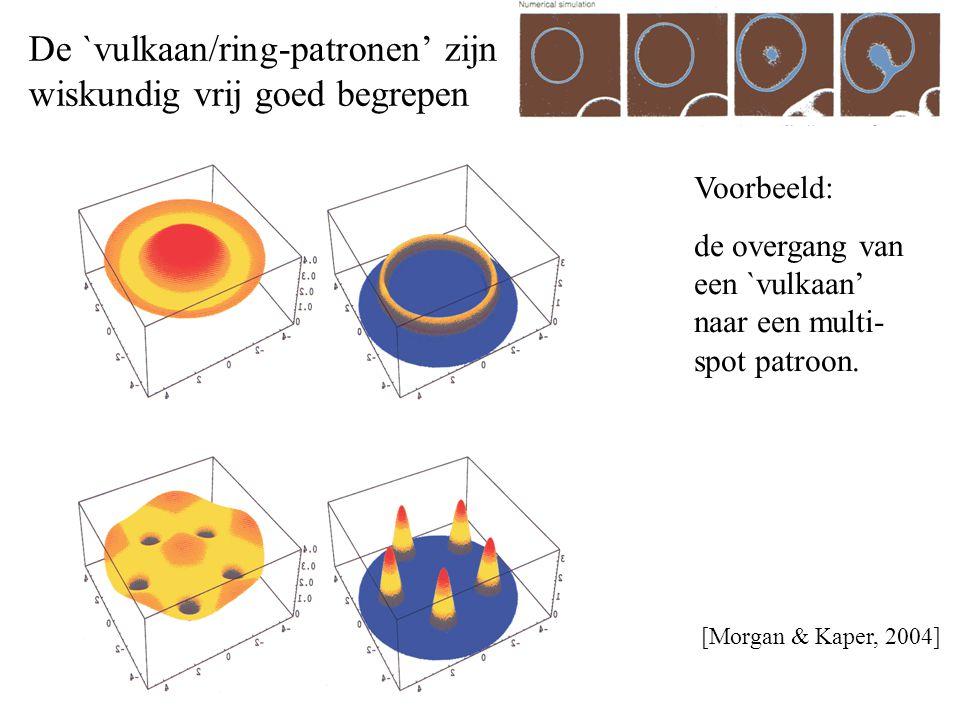 De `vulkaan/ring-patronen' zijn wiskundig vrij goed begrepen [Morgan & Kaper, 2004] Voorbeeld: de overgang van een `vulkaan' naar een multi- spot patroon.