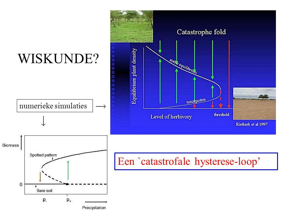 WISKUNDE Een `catastrofale hysterese-loop' numerieke simulaties