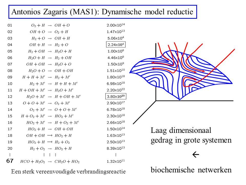 Antonios Zagaris (MAS1): Dynamische model reductie Een sterk vereenvoudigde verbrandingsreactie Laag dimensionaal gedrag in grote systemen  biochemische netwerken