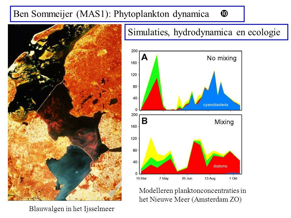 Ben Sommeijer (MAS1): Phytoplankton dynamica  Blauwalgen in het Ijsselmeer Modelleren planktonconcentraties in het Nieuwe Meer (Amsterdam ZO) Simulaties, hydrodynamica en ecologie