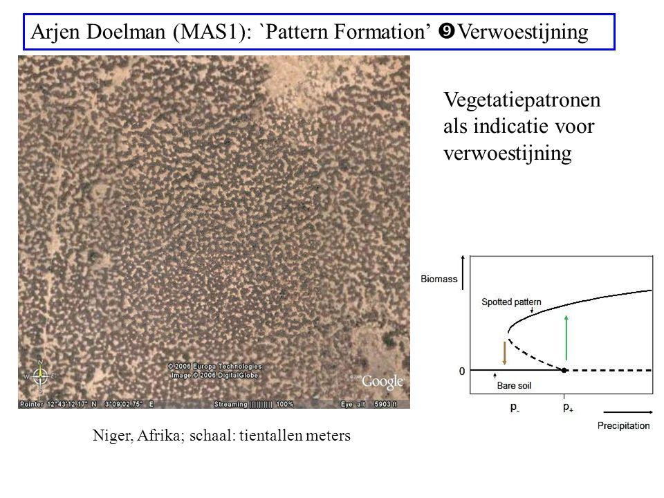Arjen Doelman (MAS1): `Pattern Formation'  Verwoestijning Niger, Afrika; schaal: tientallen meters Vegetatiepatronen als indicatie voor verwoestijning