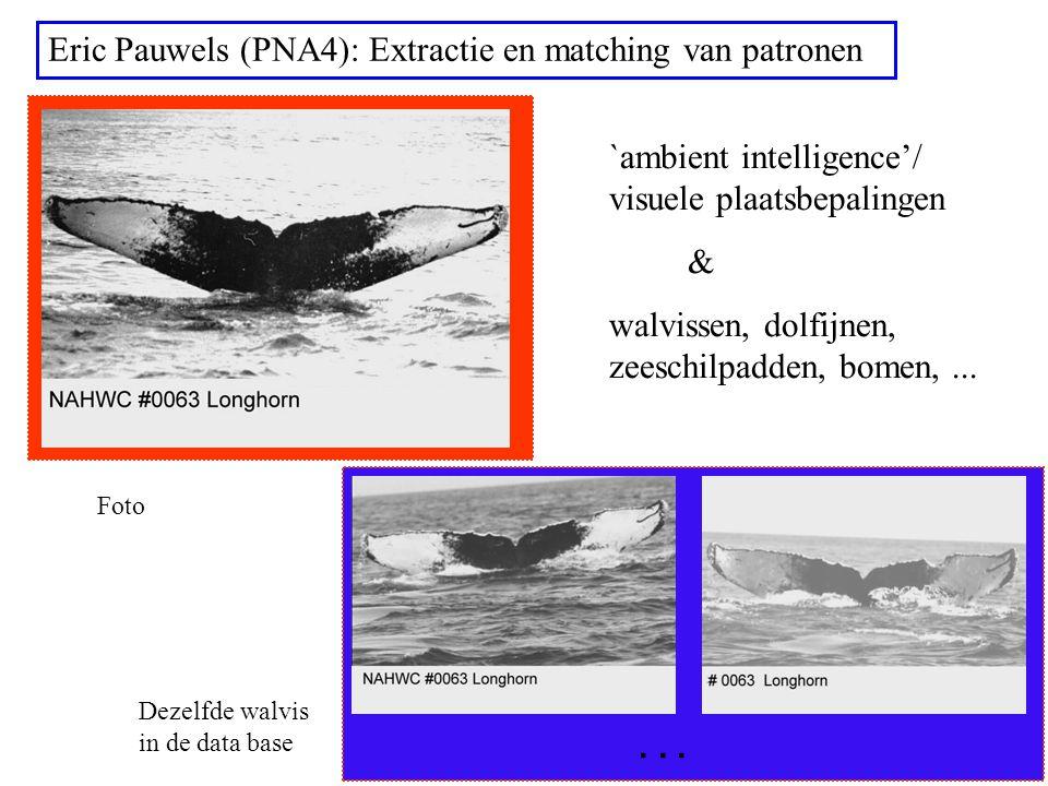 ... Eric Pauwels (PNA4): Extractie en matching van patronen `ambient intelligence'/ visuele plaatsbepalingen & walvissen, dolfijnen, zeeschilpadden, b