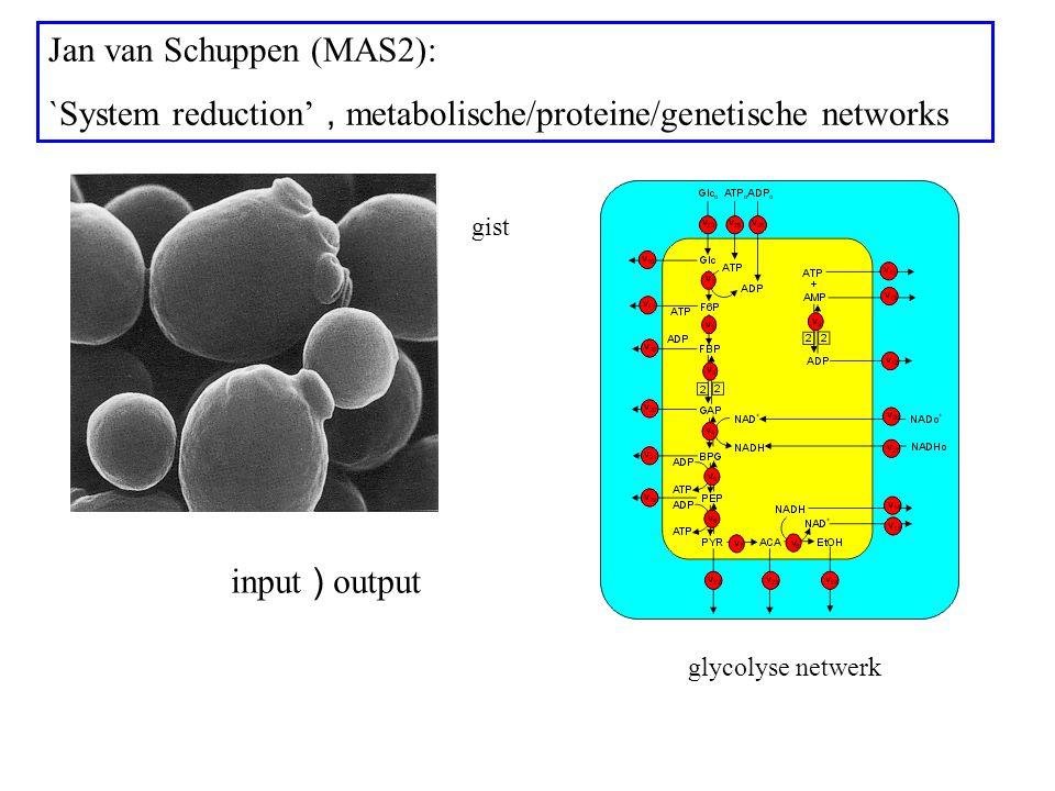 Jan van Schuppen (MAS2): `System reduction', metabolische/proteine/genetische networks input ) output glycolyse netwerk gist