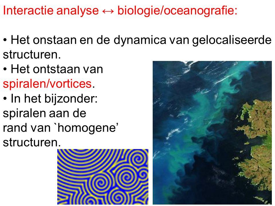 Interactie analyse ↔ biologie/oceanografie: Het onstaan en de dynamica van gelocaliseerde structuren. Het ontstaan van spiralen/vortices. In het bijzo