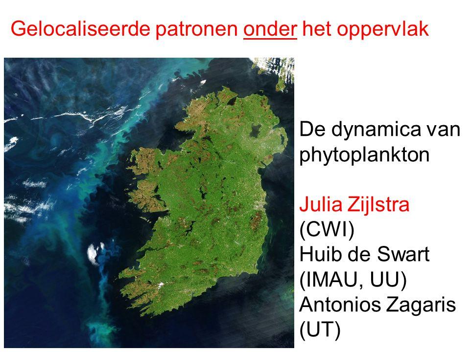 Gelocaliseerde patronen onder het oppervlak De dynamica van phytoplankton Julia Zijlstra (CWI) Huib de Swart (IMAU, UU) Antonios Zagaris (UT)