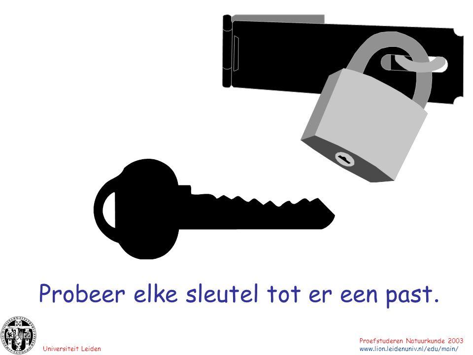 Universiteit Leiden Proefstuderen Natuurkunde 2003 www.lion.leidenuniv.nl/edu/main/ Probeer elke sleutel tot er een past.