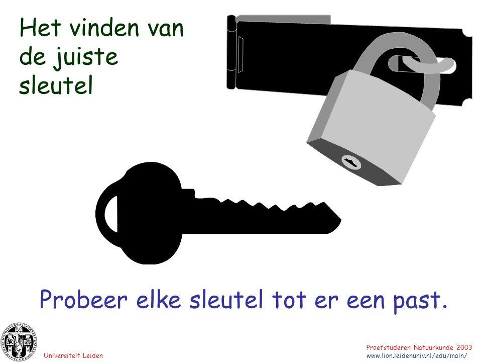 Universiteit Leiden Proefstuderen Natuurkunde 2003 www.lion.leidenuniv.nl/edu/main/ Probeer elke sleutel tot er een past. Het vinden van de juiste sle