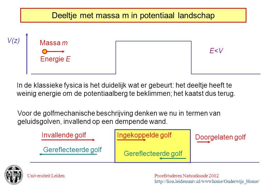 Universiteit LeidenProefstuderen Natuurkunde 2002 http://lion.leidenuniv.nl/wwwhome/Onderwijs_Home/ Deeltje met massa m in potentiaal landschap Massa