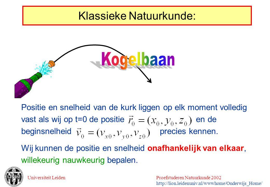 Universiteit LeidenProefstuderen Natuurkunde 2002 http://lion.leidenuniv.nl/wwwhome/Onderwijs_Home/ Klassieke Natuurkunde: Positie en snelheid van de