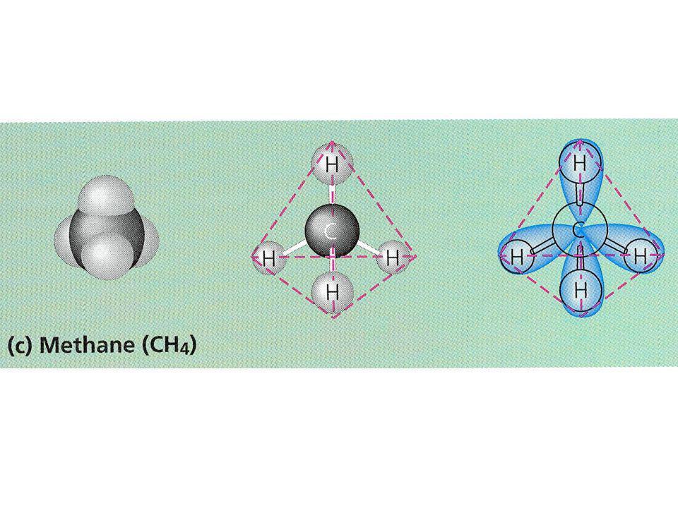 Progenoten zijn primitieve cellen met - korte eiwitten van variabele samenstelling - klein genoom met veel mutaties en met veel korte mobiele lineaire stukjes - slordige celdeling met random verdeling van genetisch materiaal