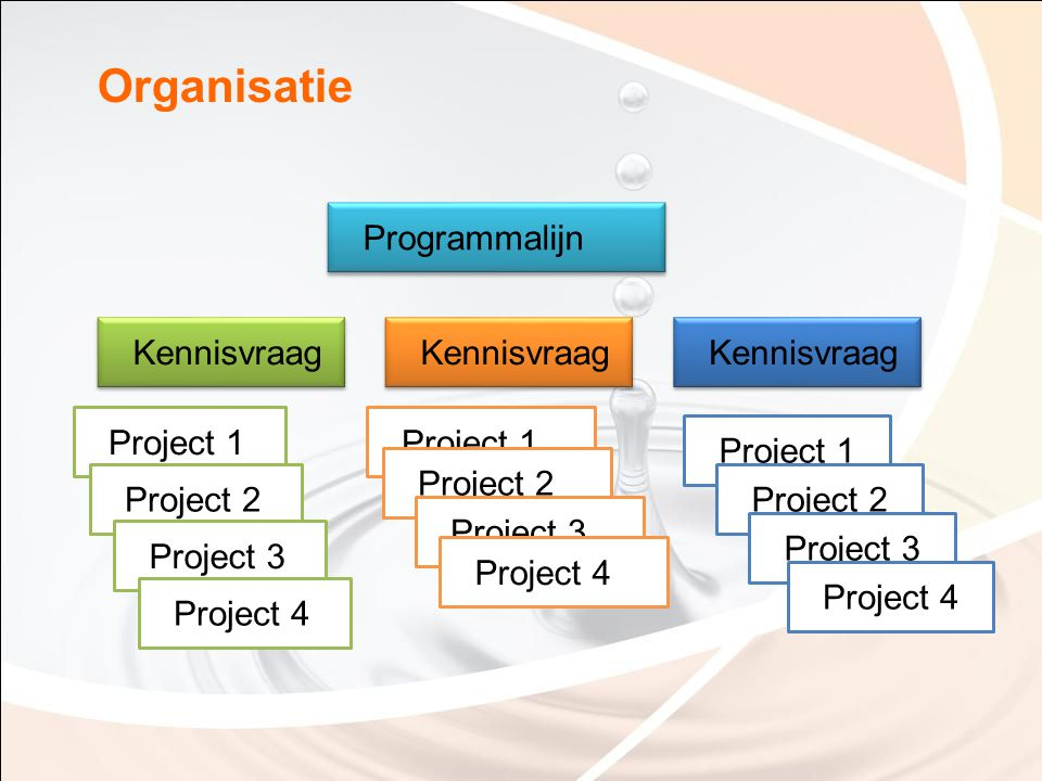 Organisatie Kennisvraag Programmalijn Project 1 Kennisvraag Project 2 Project 3 Project 4 Project 1 Project 2 Project 3 Project 4 Project 1 Project 2
