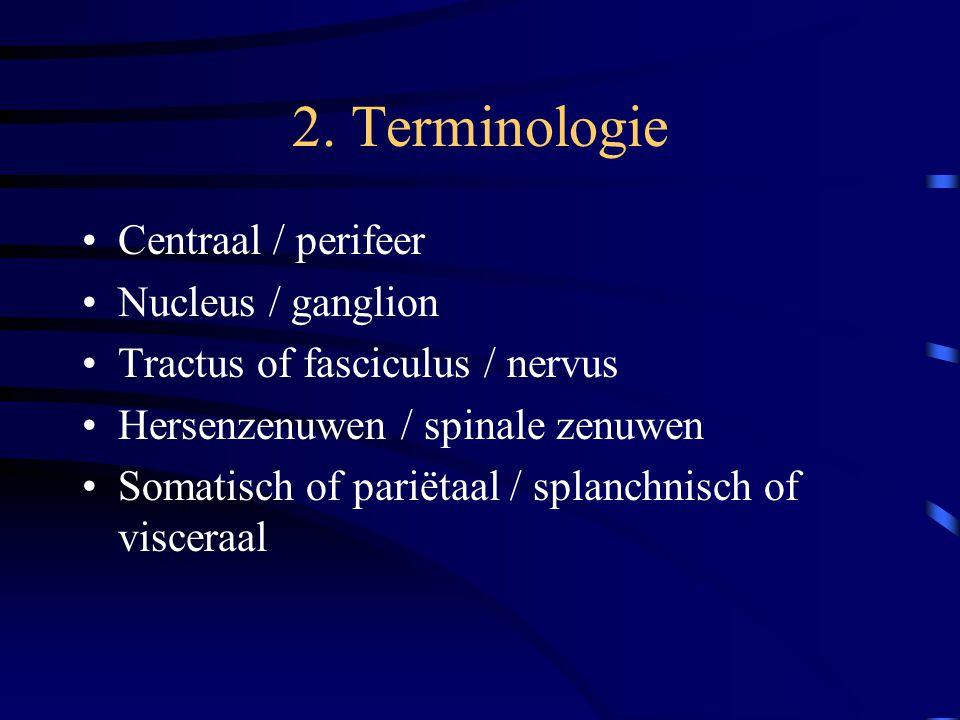 2. Terminologie Centraal / perifeer Nucleus / ganglion Tractus of fasciculus / nervus Hersenzenuwen / spinale zenuwen Somatisch of pariëtaal / splanch