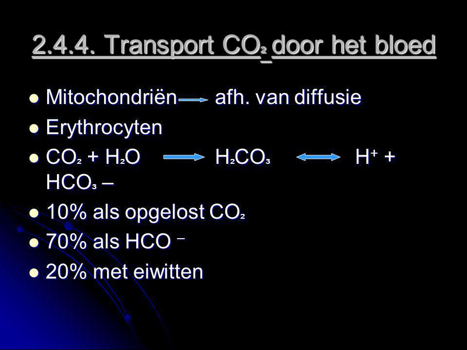 2.4.4. Transport CO ² door het bloed Mitochondriënafh. van diffusie Mitochondriënafh. van diffusie Erythrocyten Erythrocyten CO ² + H ² O H ² CO ³ H +
