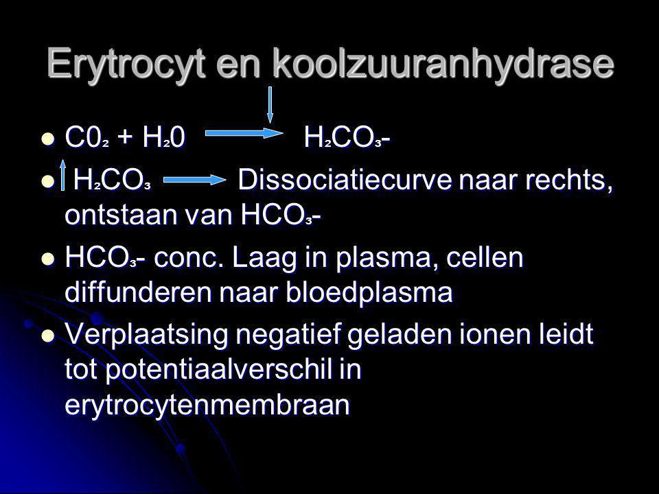 Erytrocyt en koolzuuranhydrase C0 ² + H ² 0 H ² CO ³ - C0 ² + H ² 0 H ² CO ³ - H ² CO ³ Dissociatiecurve naar rechts, ontstaan van HCO ³ - H ² CO ³ Di
