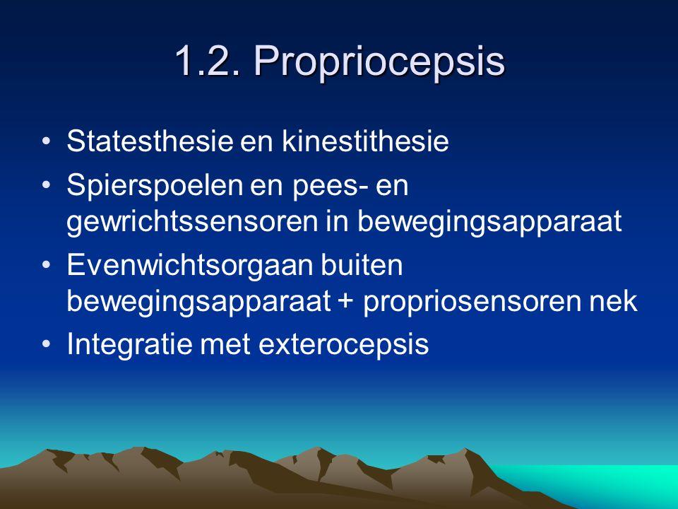 1.2. Propriocepsis Statesthesie en kinestithesie Spierspoelen en pees- en gewrichtssensoren in bewegingsapparaat Evenwichtsorgaan buiten bewegingsappa