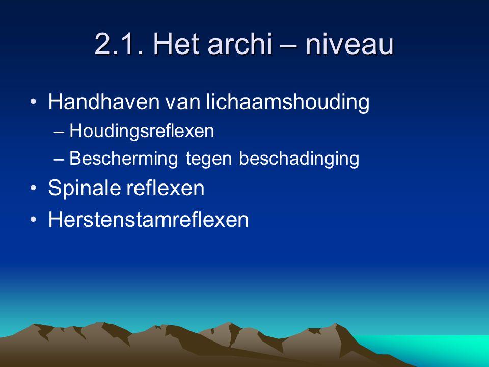 2.1. Het archi – niveau Handhaven van lichaamshouding –Houdingsreflexen –Bescherming tegen beschadinging Spinale reflexen Herstenstamreflexen