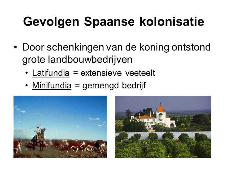 Gevolgen Spaanse kolonisatie Door schenkingen van de koning ontstond grote landbouwbedrijven Latifundia = extensieve veeteelt Minifundia = gemengd bed