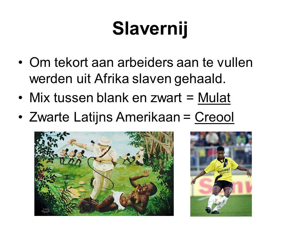 Slavernij Om tekort aan arbeiders aan te vullen werden uit Afrika slaven gehaald. Mix tussen blank en zwart = Mulat Zwarte Latijns Amerikaan = Creool