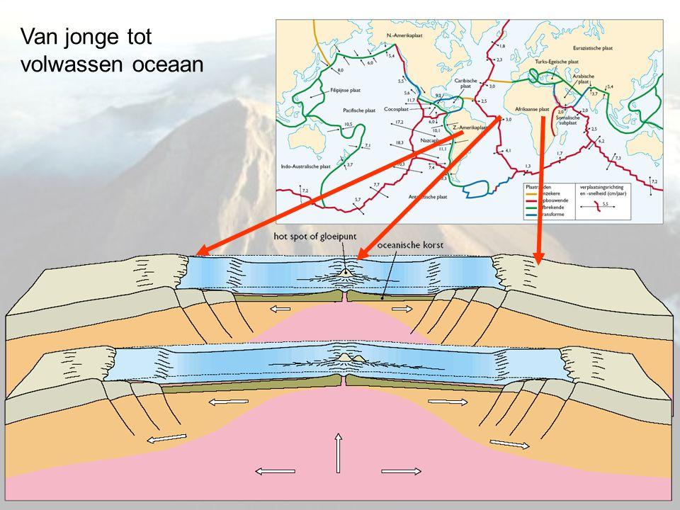 Toepassing in Europa: Platentektoniek rond de Middellandse Zee Apennijnen met vulkanen Kreta en de (soms vulkanische) eilanden in de Egeïsche Zee met aan de zuidrand een boogvormige diepzeetrog
