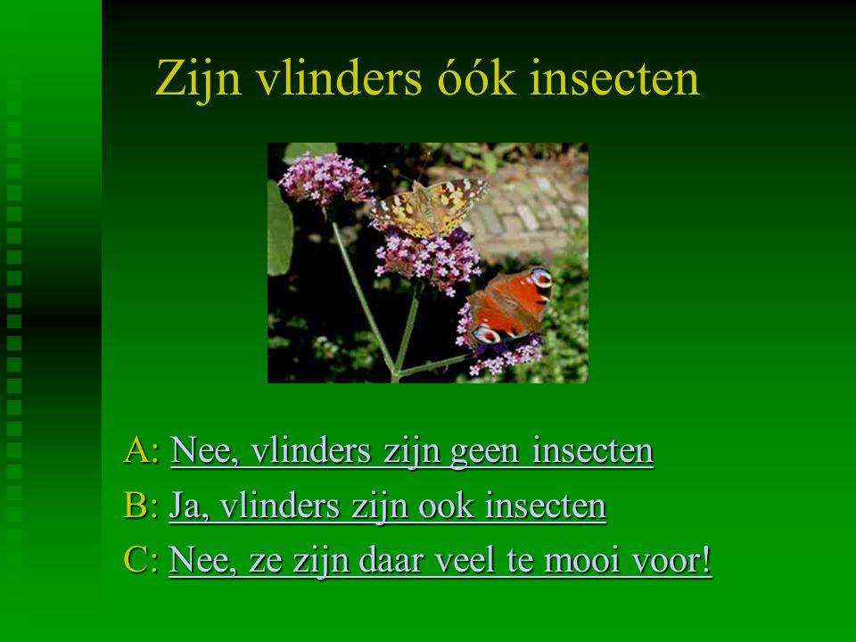 Zijn vlinders óók insecten A: Nee, vlinders zijn geen insecten Nee, vlinders zijn geen insectenNee, vlinders zijn geen insecten B: Ja, vlinders zijn o