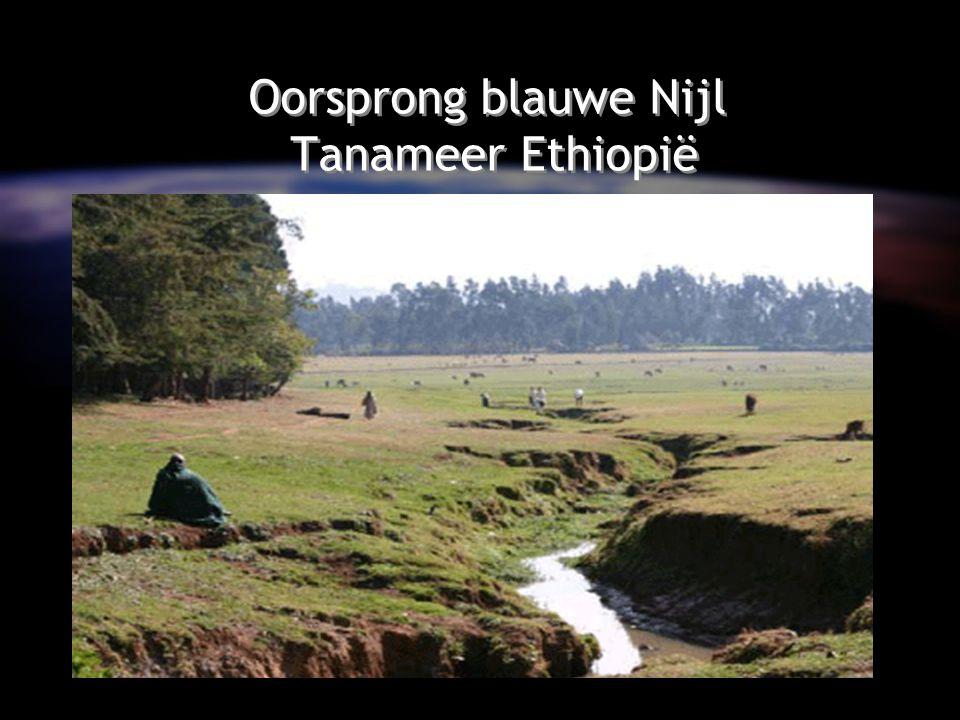 Oorsprong blauwe Nijl Tanameer Ethiopië