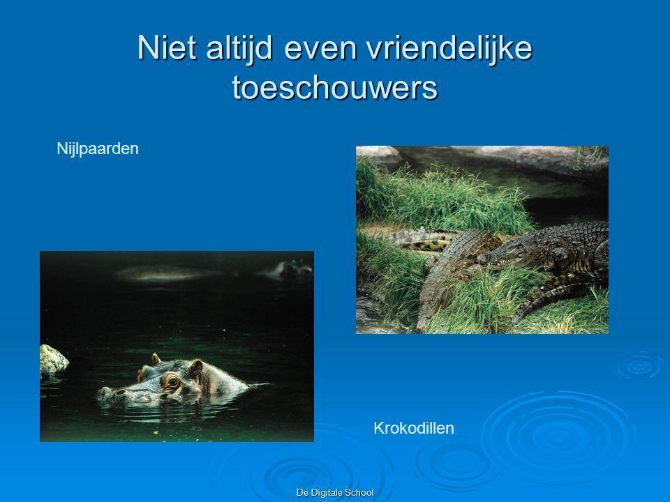 De Digitale School Niet altijd even vriendelijke toeschouwers Nijlpaarden Krokodillen