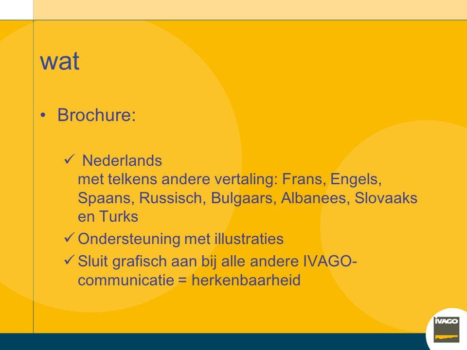 Brochure anderstaligen? Werkgroep zwerfvuil en sluikstorten Rondvraag door integratiedienst bij diensten en intermediaire organisaties Vraag naar broc
