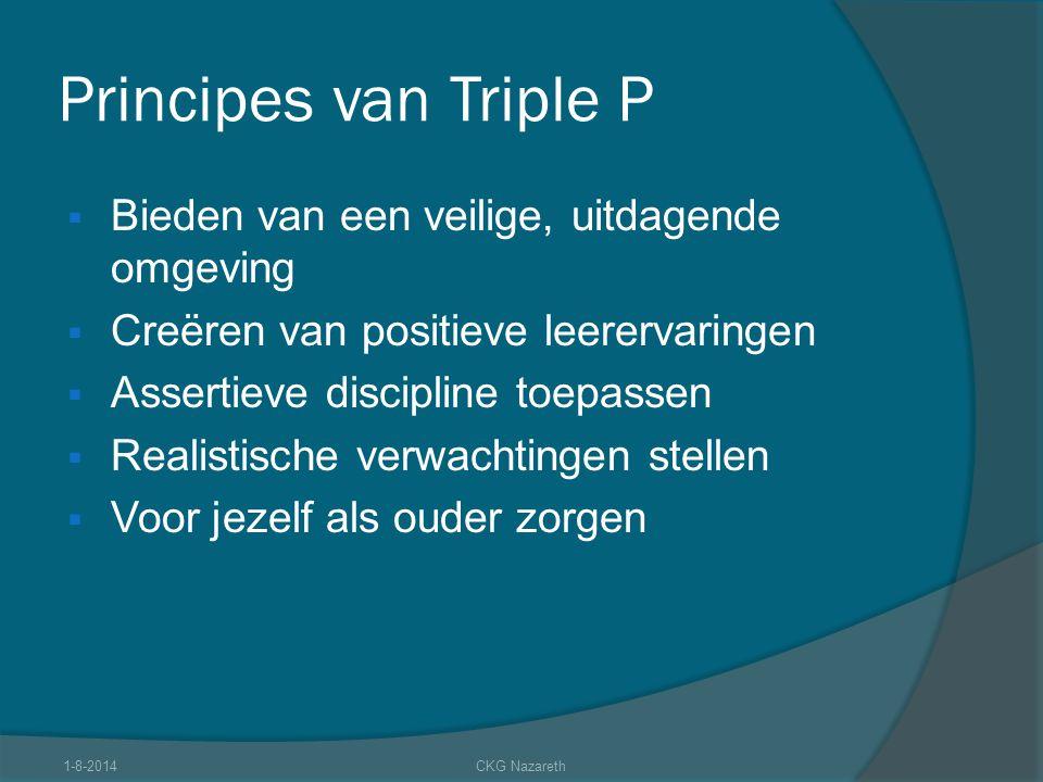 Principes van Triple P  Bieden van een veilige, uitdagende omgeving  Creëren van positieve leerervaringen  Assertieve discipline toepassen  Realis