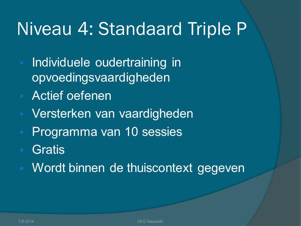 Niveau 4: Standaard Triple P  Individuele oudertraining in opvoedingsvaardigheden  Actief oefenen  Versterken van vaardigheden  Programma van 10 s