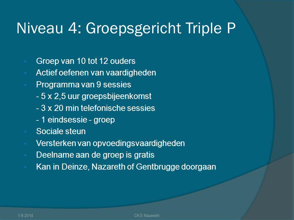 Niveau 4: Groepsgericht Triple P  Groep van 10 tot 12 ouders  Actief oefenen van vaardigheden  Programma van 9 sessies - 5 x 2,5 uur groepsbijeenko