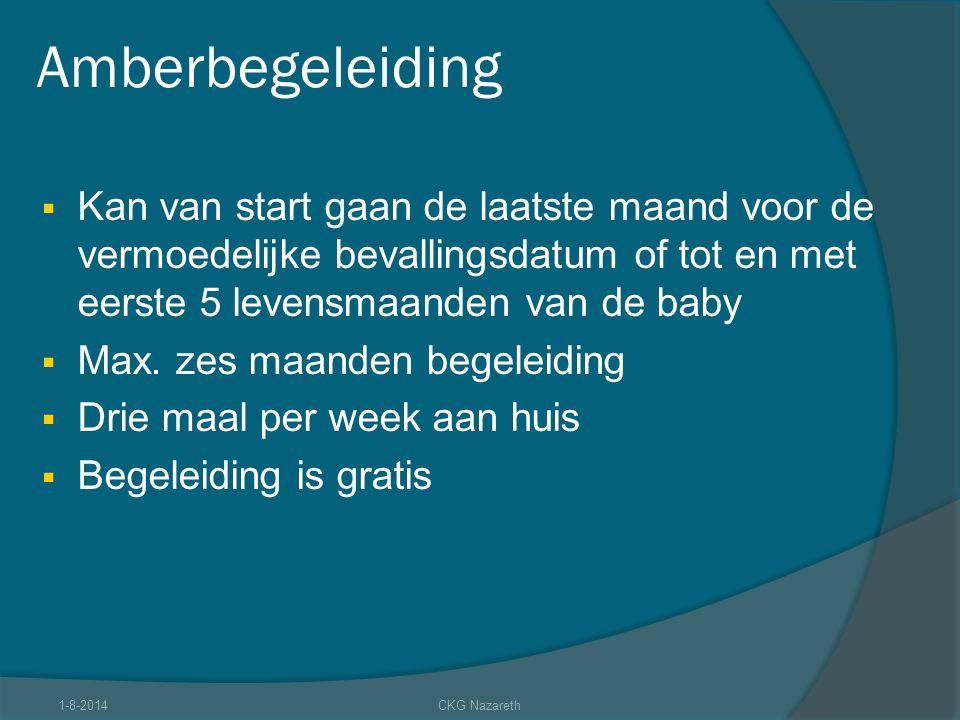 Amberbegeleiding  Kan van start gaan de laatste maand voor de vermoedelijke bevallingsdatum of tot en met eerste 5 levensmaanden van de baby  Max. z