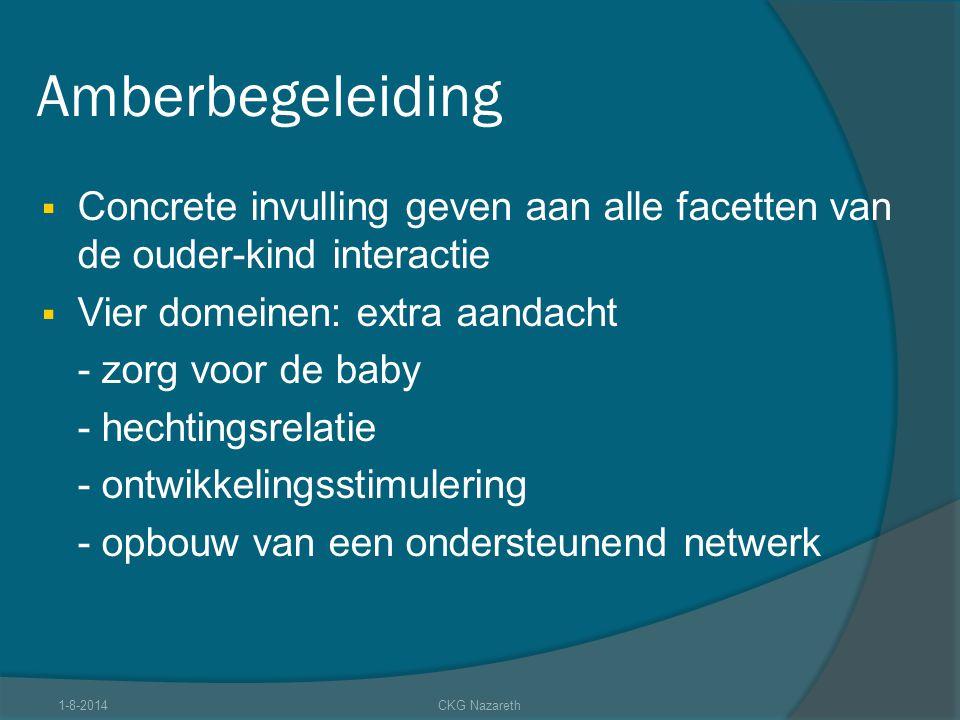 Amberbegeleiding  Concrete invulling geven aan alle facetten van de ouder-kind interactie  Vier domeinen: extra aandacht - zorg voor de baby - hecht
