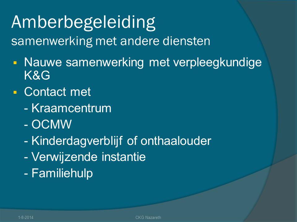 Amberbegeleiding samenwerking met andere diensten  Nauwe samenwerking met verpleegkundige K&G  Contact met - Kraamcentrum - OCMW - Kinderdagverblijf