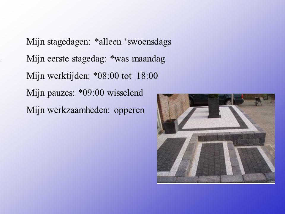 is een sierbestratingsbedrijf Adres: Pieter De Hoogh Straat55 0570-641305 Plaats: Deventer **Wat voor bedrijf is het ? Een bouwbedrijf Een magazijn Ee