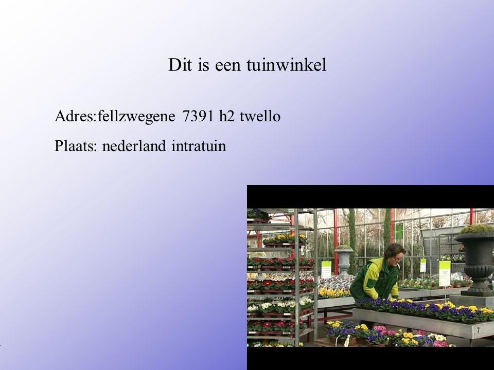 Dit is een tuinwinkel Adres:fellzwegene 7391 h2 twello Plaats: nederland intratuin **Wat voor bedrijf is het .