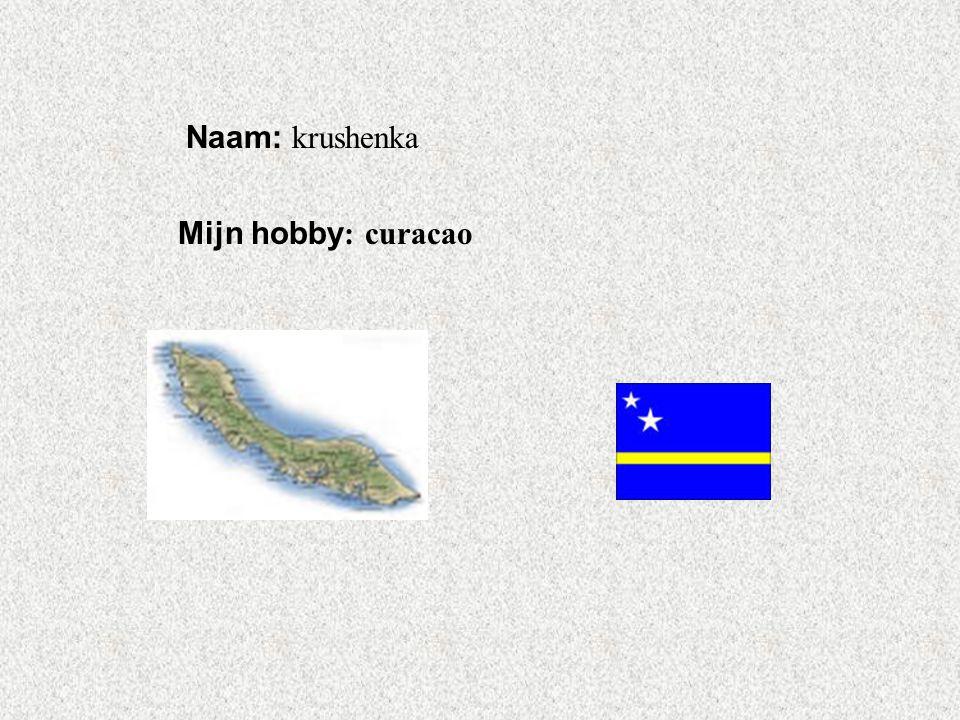 """Naam: krushenka Mijn hobby : curacao Klik op """"Naam"""". Vul je naam in. Doe hetzelfde met """"hobby"""" Hier kun je een foto / tekening Invoegen"""