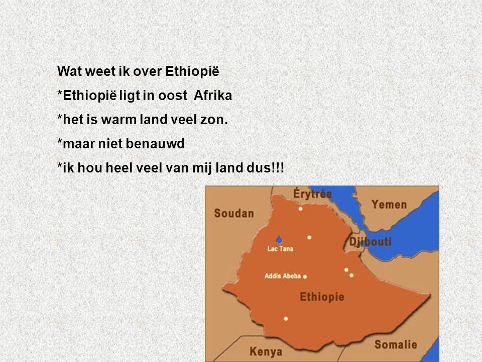 Wat weet ik over Ethiopië *Ethiopië ligt in oost Afrika *het is warm land veel zon. *maar niet benauwd *ik hou heel veel van mij land dus!!! Vul hier