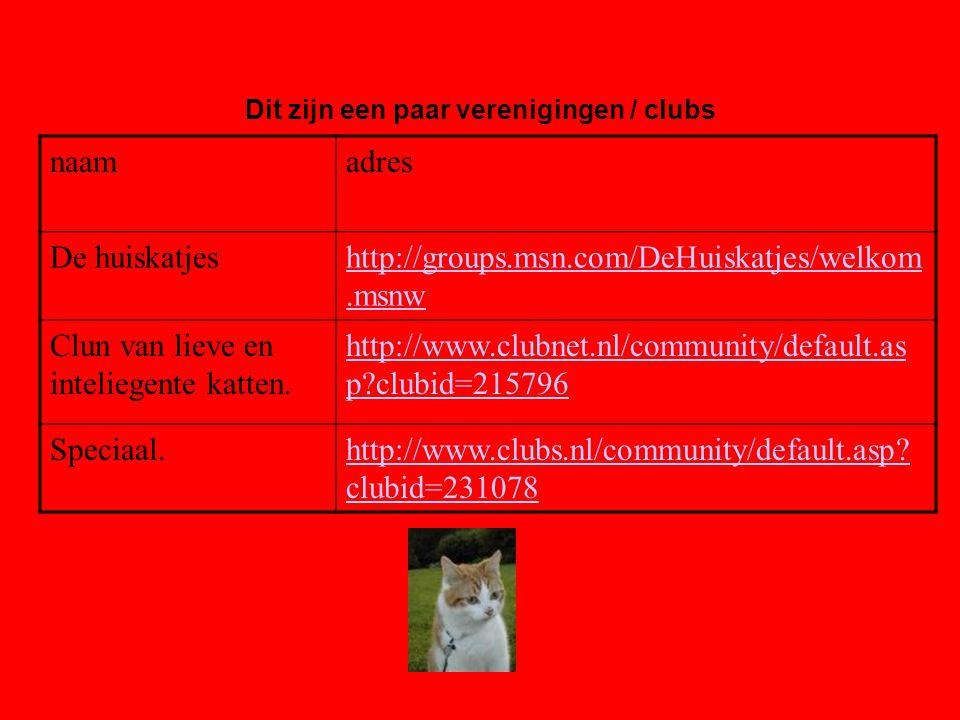 naamadres De huiskatjeshttp://groups.msn.com/DeHuiskatjes/welkom.msnw Clun van lieve en inteliegente katten. http://www.clubnet.nl/community/default.a