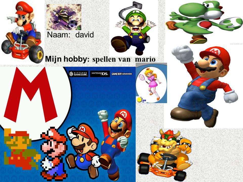 """Naam: david Mijn hobby : spellen van mario Klik op """"Naam"""". Vul je naam in. Doe hetzelfde met """"hobby"""" Hier kun je een foto / tekening Invoegen"""