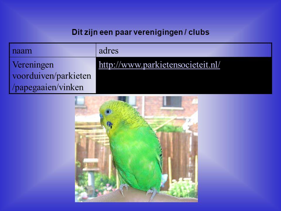 naamadres Vereningen voorduiven/parkieten /papegaaien/vinken http://www.parkietensocieteit.nl/ Dit zijn een paar verenigingen / clubs Als er geen vere