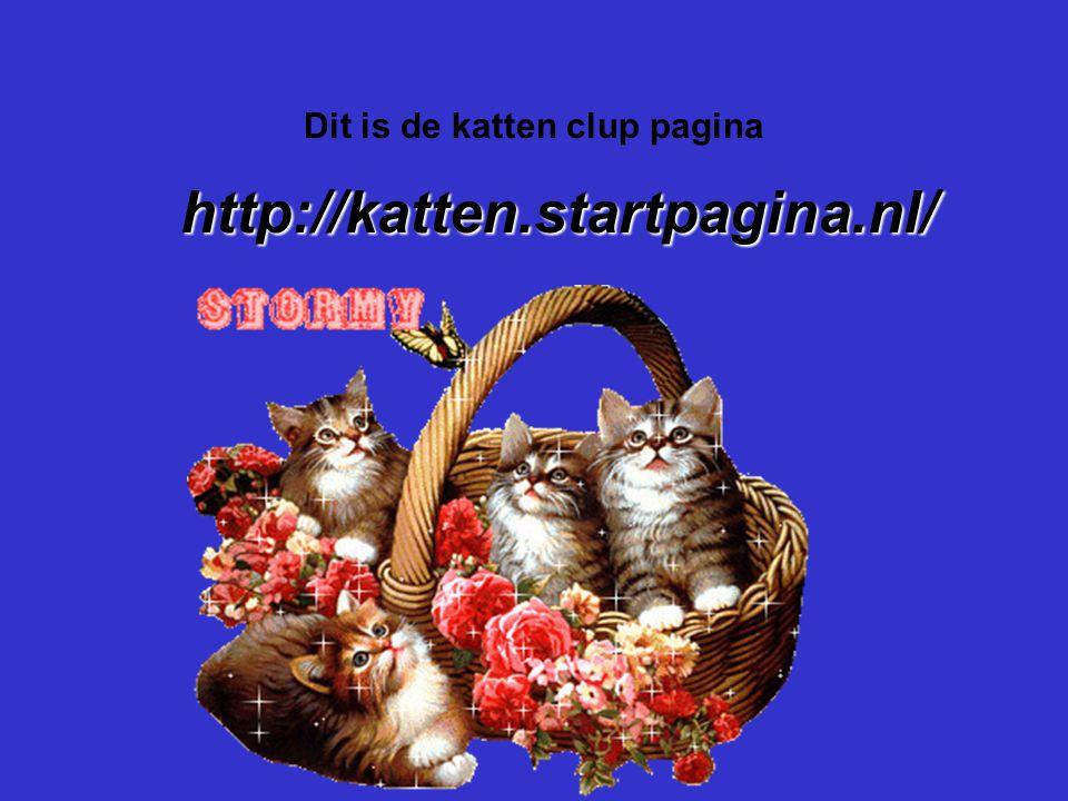 """Dit is de katten clup pagina Als er geen verenigingen zijn, klik dan met de rechter muisknop op de 5e dia; klik op """"knippen"""" http://katten.startpagina"""