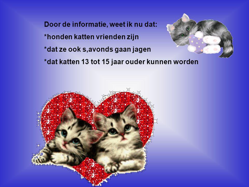 Door de informatie, weet ik nu dat: *honden katten vrienden zijn *dat ze ook s,avonds gaan jagen *dat katten 13 tot 15 jaar ouder kunnen worden Kijk n