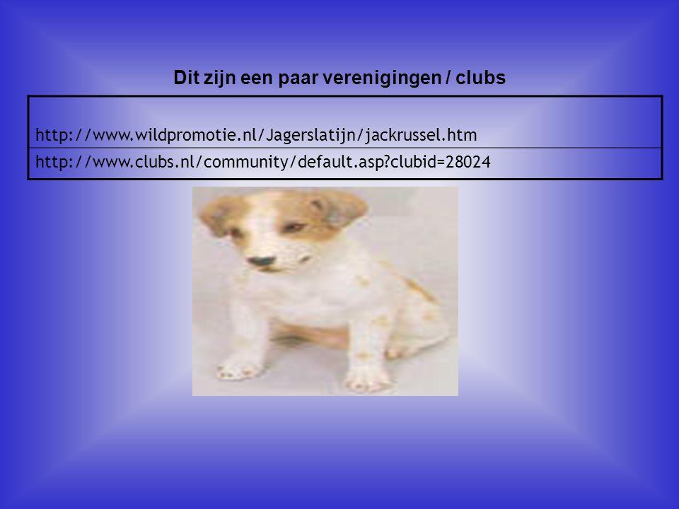 http://www.wildpromotie.nl/Jagerslatijn/jackrussel.htm http://www.clubs.nl/community/default.asp?clubid=28024 Dit zijn een paar verenigingen / clubs A