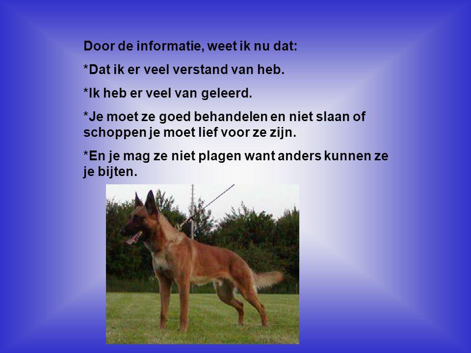 Gebruikte informatie: *Uit een boek over honden.*Gaan zoeken op het internet.