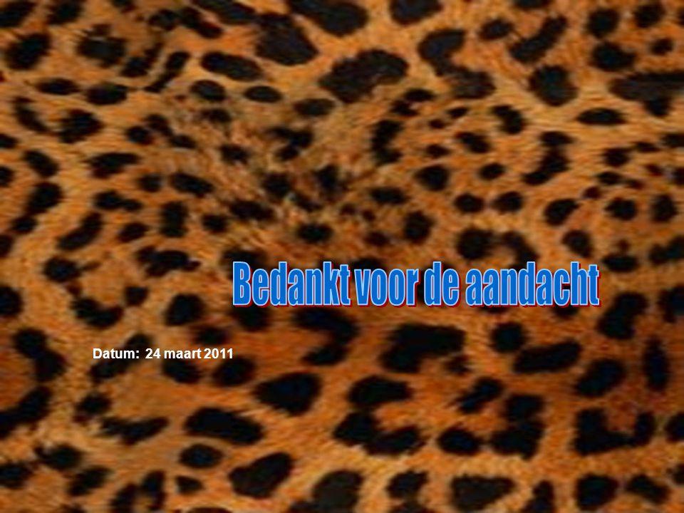 Datum: 24 maart 2011 Welke informatie heb je gebruikt : -Boeken -Internetsites -Clubblaadje -Eigen ervaring -Informatie van clubleden -Kijk naar de an