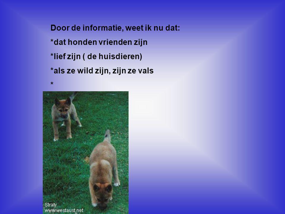 Door de informatie, weet ik nu dat: *dat honden vrienden zijn *lief zijn ( de huisdieren) *als ze wild zijn, zijn ze vals * Kijk naar de antwoorden va