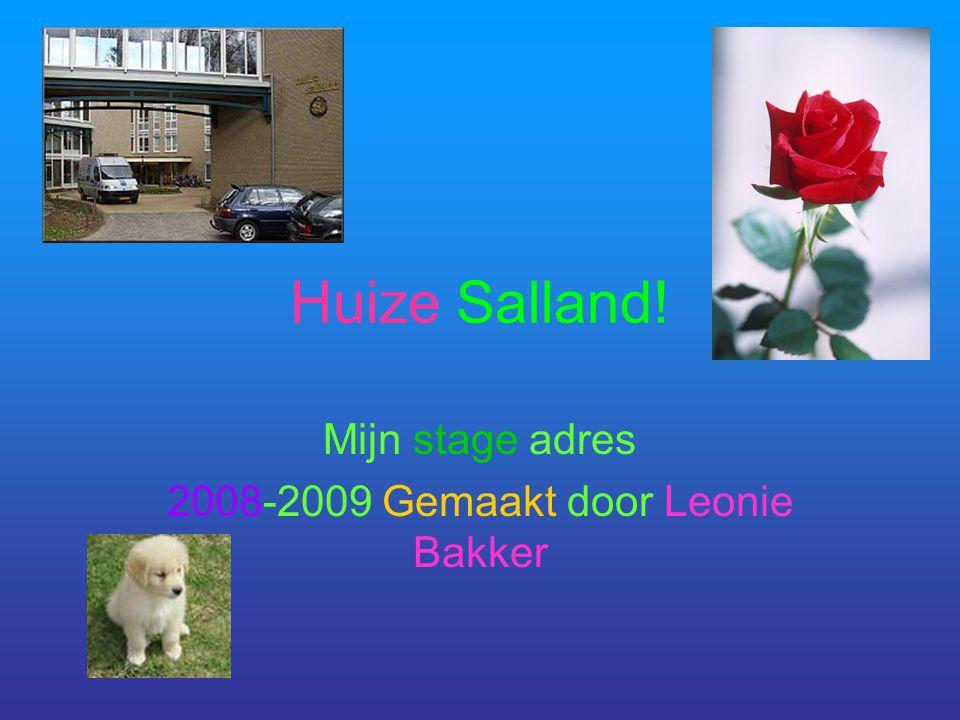 Huize Salland! Mijn stage adres 2008-2009 Gemaakt door Leonie Bakker