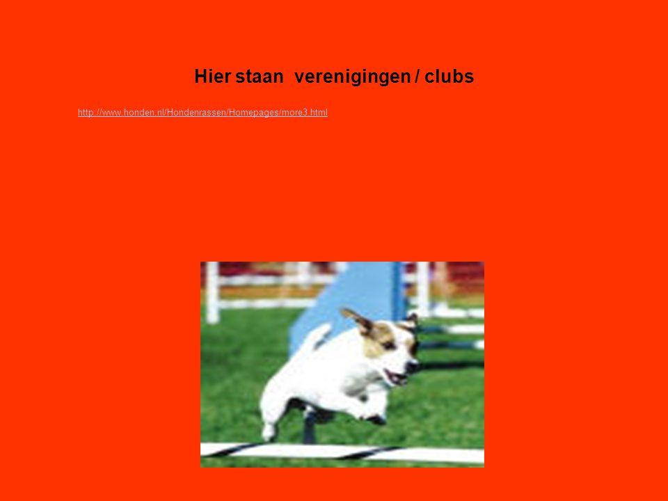 Hier staan verenigingen / clubs Als er geen verenigingen zijn, klik dan met de rechter muisknop op de 5e dia; klik op knippen http://www.honden.nl/Hondenrassen/Homepages/more3.html