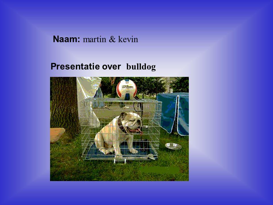 Naam: martin & kevin Presentatie over bulldog Klik op Naam .